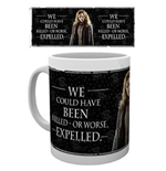 Taza Harry Potter 259940