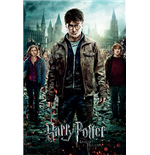 Póster Harry Potter 259950