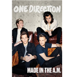 Póster One Direction 259963
