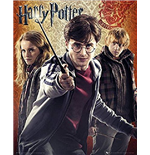 Póster Harry Potter 261086