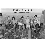 Póster Friends 261798