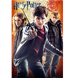 Póster Harry Potter 270594