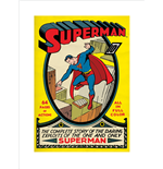 Póster Superman 271571