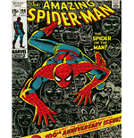 Póster Spiderman 271595