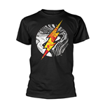 Camiseta Flash 273463