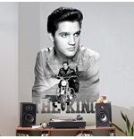 Vinilo decorativo para pared Elvis Presley 274636