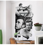 Vinilo decorativo para pared James Dean 274637
