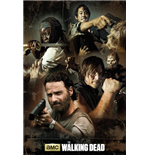 Póster The Walking Dead 275888