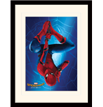Copia Spiderman 276277