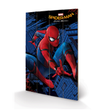 Copia Spiderman 276283