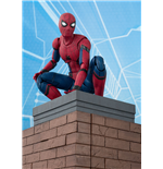 Spider-Man Homecoming Figura S.H. Figuarts Spider-Man & Tamashii Option Act Wall 15 cm