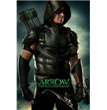 Póster Arrow 282448