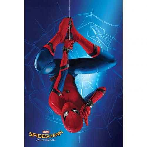 Póster Spiderman 284220