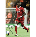 Póster Liverpool FC 285122