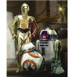 Póster Star Wars 286475