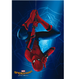 Póster Spiderman 288159