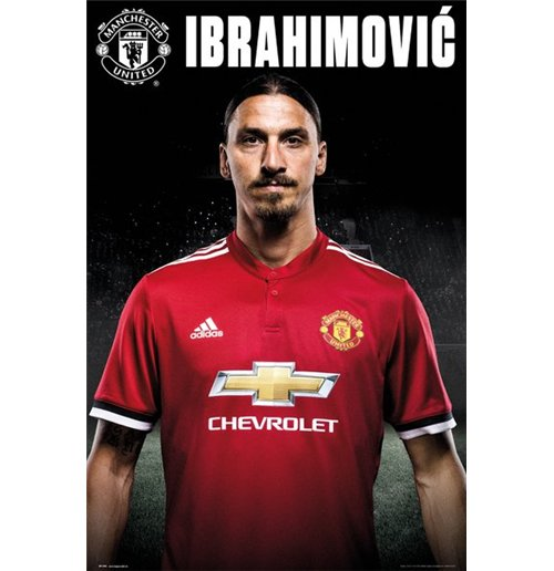 Póster Manchester United FC 293852