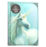 Cuaderno Anne Stokes 298533
