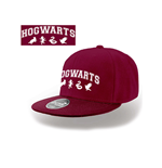 Gorra Harry Potter 301393