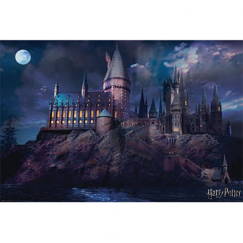 Póster Harry Potter Hogwarts 299
