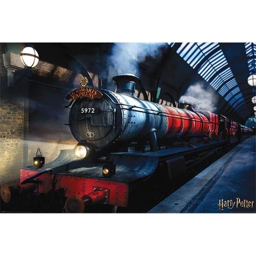 Póster Harry Potter 308767
