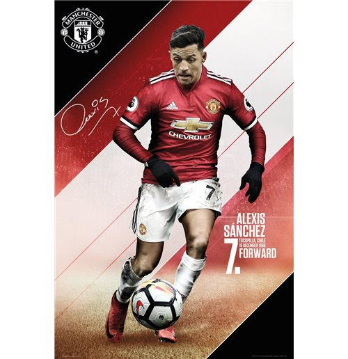 Póster Manchester United FC 311336