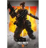 Póster Call Of Duty 333116