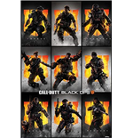 Póster Call Of Duty 333117
