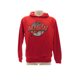 Sudadera Big Bang Theory
