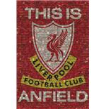 Poster Liverpool This Is Anfield Mosaic