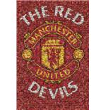 Poster Manchester United Red Devils