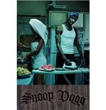 Poster Snoop Dog-Money