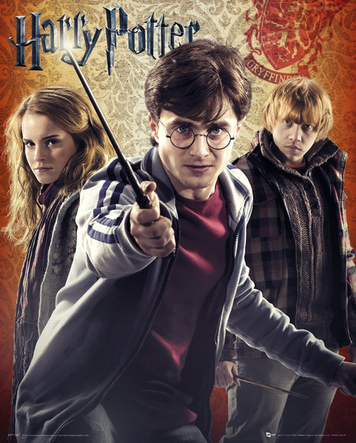 Póster Harry Potter 55638