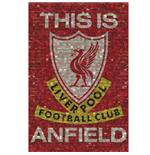 Póster Liverpool FC 39
